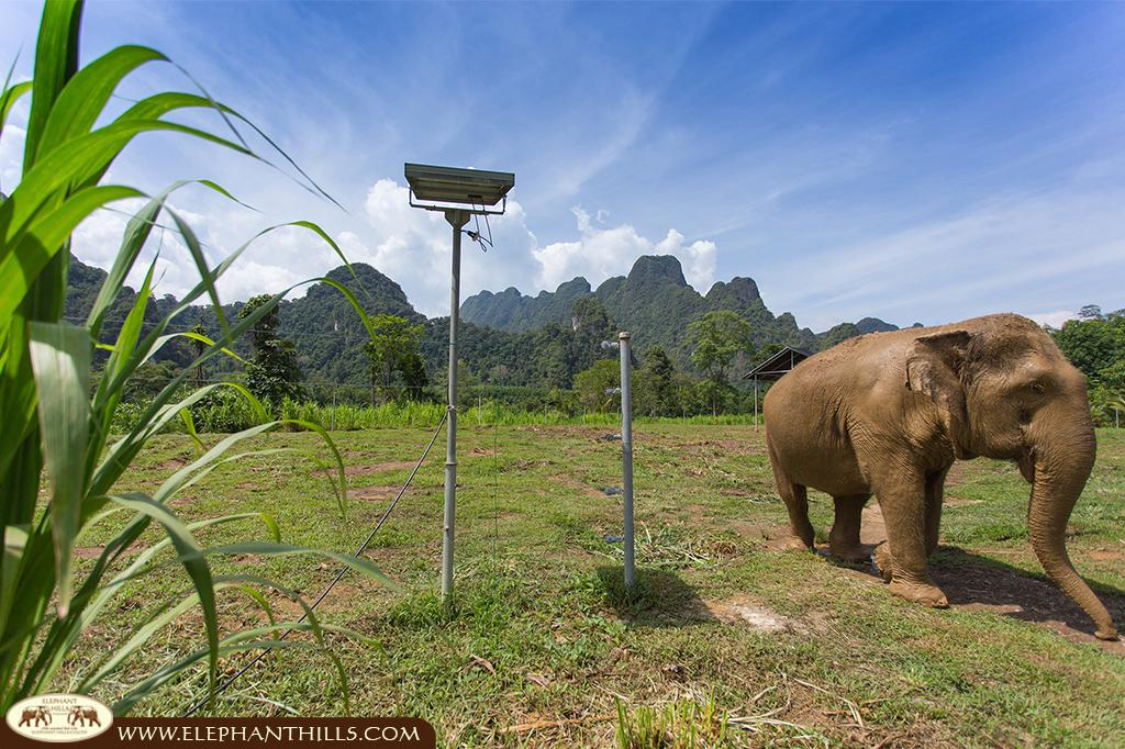 The Elephant Camp embedded in a breathtaking and stunning scenery