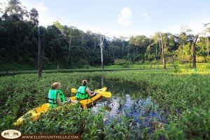 Enjoy exploring and kayaking through the unspoiled klongs of Cheow Larn Lake