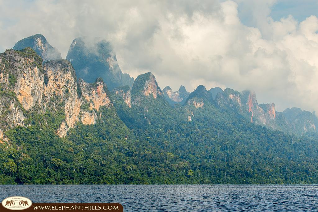 Unspoiled rainforest in Southern Thailand