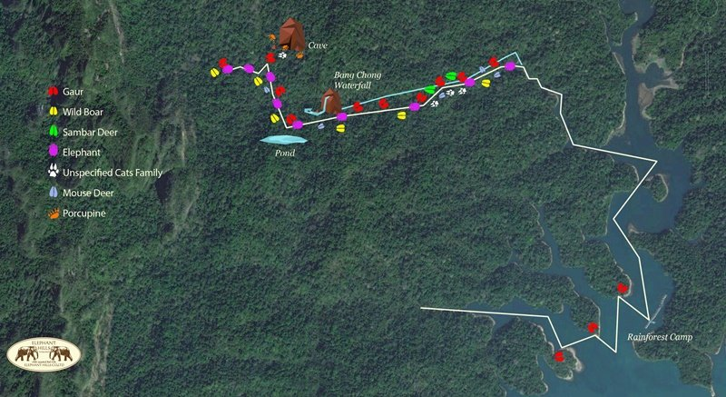 Elephant Hills Camera Trap Project map Khao Sok