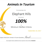 Animals in Tourism 100%