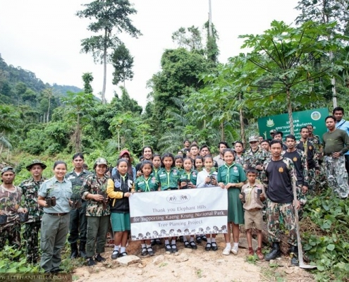 Elephant Hills - Tree-planting co2 offset