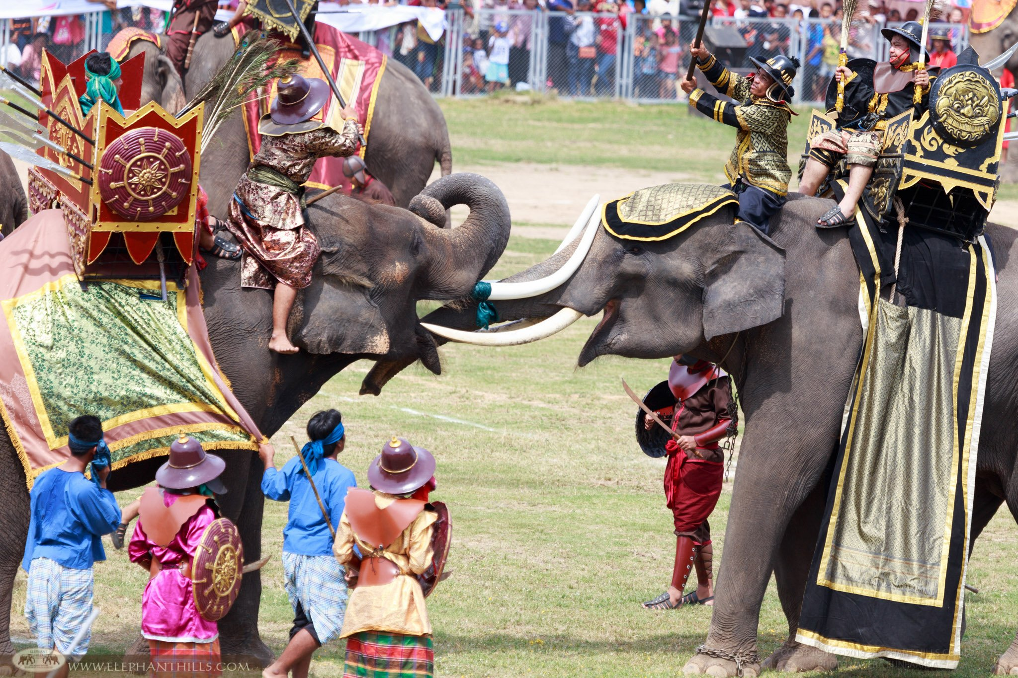 Elephants use to be part of Thailand's war in the past; this show was set at Surin, North Eastern province in Thailand