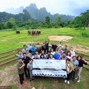 Elephant Medicine and Surgery - Workshop at Elephant Hills