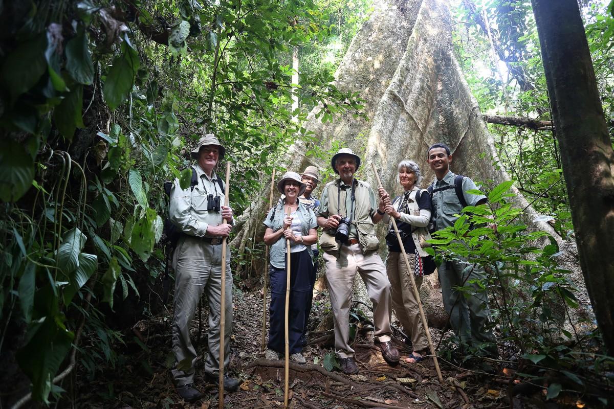 Elephant Hills Luxury Tented Camp Khao Sok National Park Thailand Activities Jungle Trekking